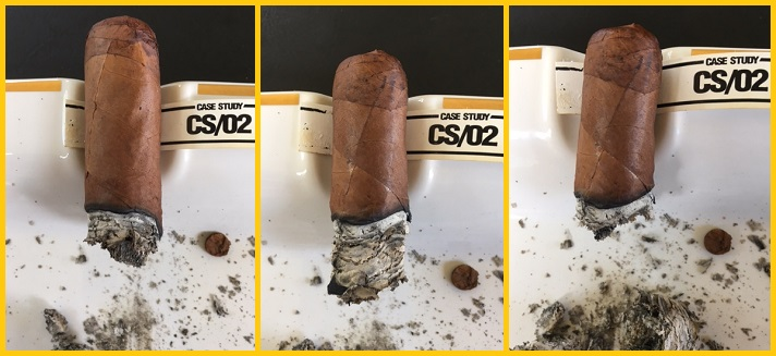 Case Study CS 02 Robusto 4
